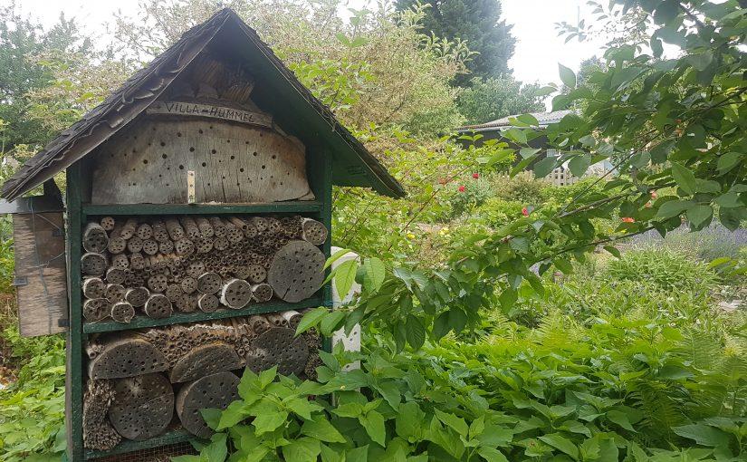 Insektenhotel in Anlage 4